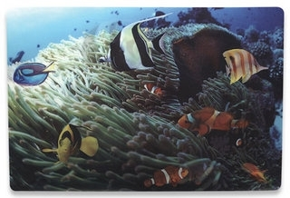 Notebook Skin, 3D Tropical Reef - Folije za laptop